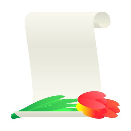 paper scroll: Bouquet of tulips and paper scroll.