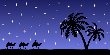 camels: Man with camels on the background of palm trees and the night sky. Illustration