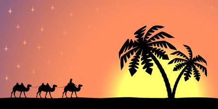 camel silhouette: Man with camels on the background of palm trees and sunset.