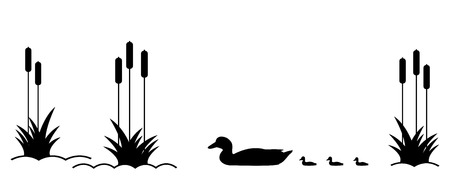 duck silhouette: .Duck with ducklings on the lake among the reeds.