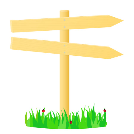 stick insect: Wooden pointer in the green grass. illustration. Illustration