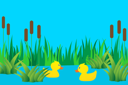 Two ducks in a lake on the background of grass.