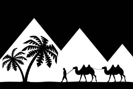 낙타 피라미드 남자입니다. 스톡 콘텐츠