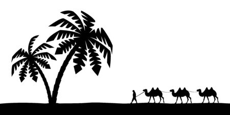 Man on the camel in palm trees.