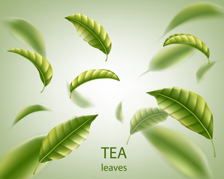 Tea leaves background. Green leaves tea whirl in the air for design, advertising and packaging. Vector illustration EPS 10 Illusztráció