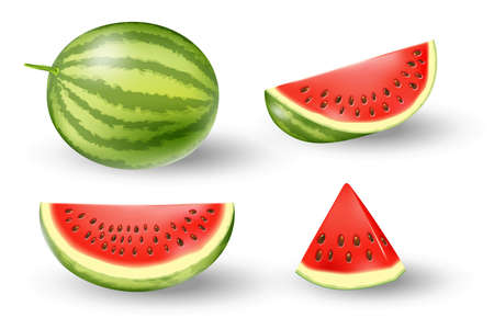 Realistic fresh watermelon set. Juicy watermelon isolated on white. Tropical fruits vector illustration Ilustracja