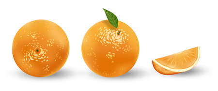 Realistic set of oranges isolated on white. Fresh ripe oranges with leaves. Tropical fruits vector illustration Ilustracja
