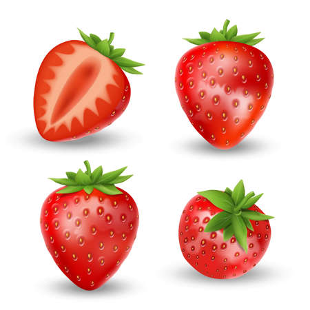 Realistic set of strawberry isolated on white. Fresh ripe strawberry with leaves. Red fruits vector illustration