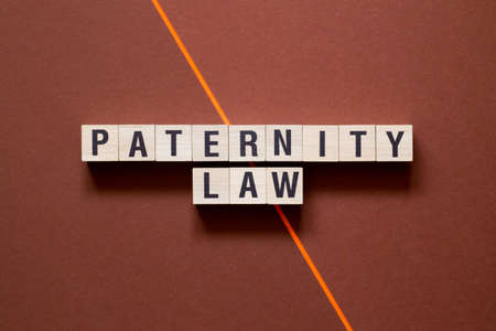 Paternity law word cpncept on cubes. Banque d'images