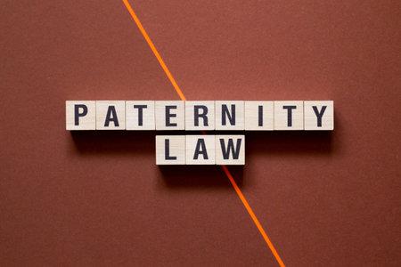 Paternity law word cpncept on cubes. Banco de Imagens