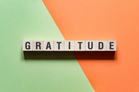 Gratitude word concept on cubes Reklamní fotografie