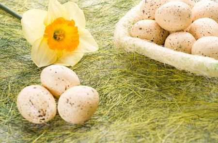 Daffodil and full basket with decorated speckled easter eggs photo