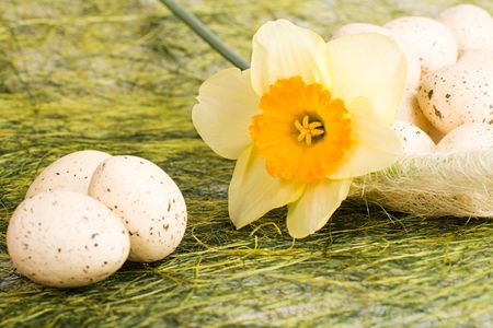 speckle: Full basket with decorated speckled easter eggs and daffodil Stock Photo
