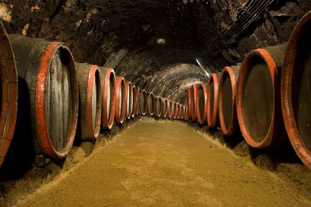 Old wine barrels are stored in winery cellar photo