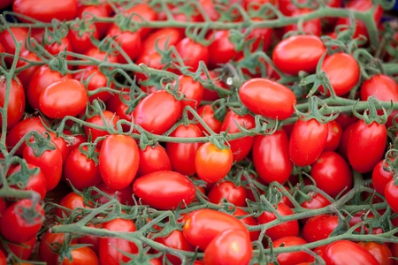Bunches of fresh ripe red cherry tomatoes plum shape close-up photo