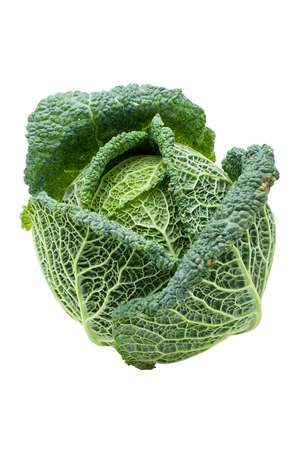 savoy cabbage: Head of fresh ripe Savoy cabbage isolated Stock Photo