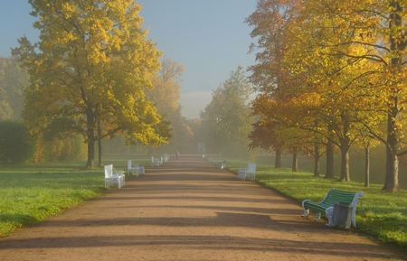 Misty autumn morning in Alexandrovsky Park in Tsarskoye Selo