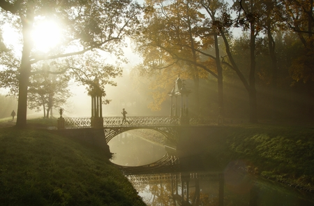 tsarskoye: Misty autumn morning in Alexandrovsky Park in Tsarskoye Selo
