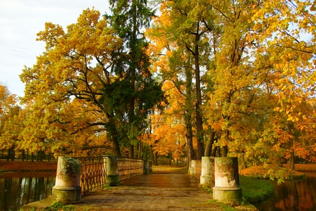 morn: Clear autumn day in the Alexander Park in Tsarskoye Selo Stock Photo