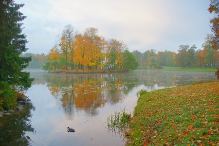 Misty autumn morning in the Catherine park in Tsarskoye Selo
