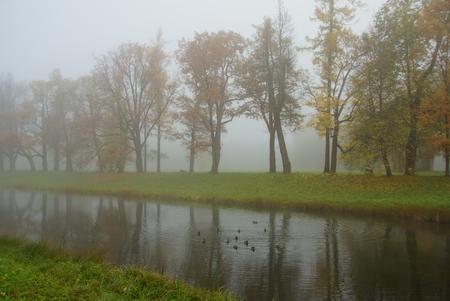 Mlstě podzimní ráno v parku Alexandrovsky v Tsarskoye Selo Reklamní fotografie