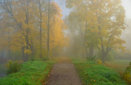 morn: Autumn misty morning in Alexandrovsky Park in Tsarskoye Selo Stock Photo