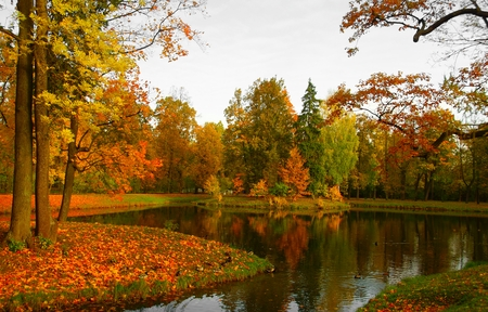 Autumn morning in Alexandrovsky Park in Tsarskoye Selo