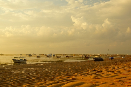 During low tide on the ocean. Morning on the island of Bali
