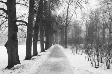 pushkin: Fog and thaw in the Catherine Park in Tsarskoye Selo