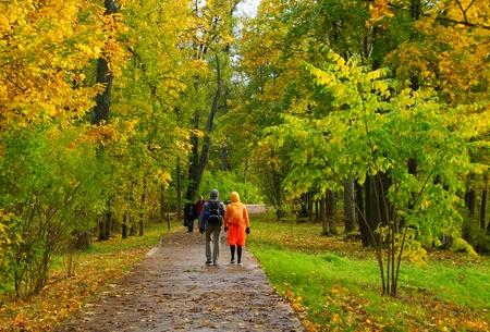passerby: Autumn colors in the Alexander Park in Tsarskoye Selo