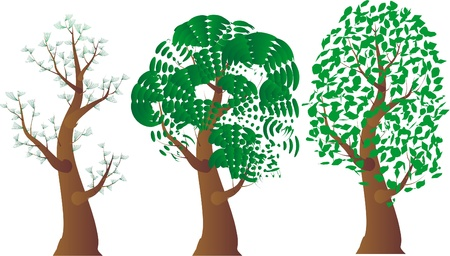 A variety of stylized trees on a white background for design