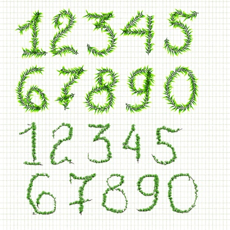 numbers of plants on a checkered background Stock Photo