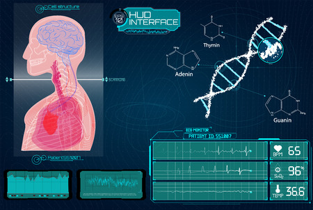 Head Up Display (HUD) UI for Medical App, Futuristic Medical HUD Interface, virtual graphic touch UI with illustration of Brain Scan, Heart Scan, DNA, Human Body,