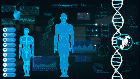 Concept of sports science, futuristic interface of heart analysis; digital blueprint of human. Analysis of the state of the heart, DNA a full examination. Futuristic interface HUD, Vector illustration Çizim
