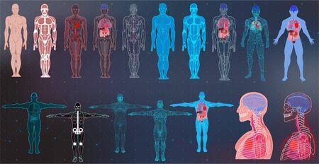 Colecciones corporales de rayos X en estilo futurista HUD SCI. Escaneo moderno de órganos internos y cuerpo humano. Imágenes sanitarias (estructura y disposición de órganos y fórmula de ADN) Colección de vectores Hud Sci