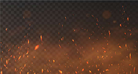 Realistic fire sparks background on a transparent background. Burning hot sparks effect with embers burning cinder and smoke flying in the air. Heat effect with glow and sparks from bonfire. Vector Stock fotó - 155311514