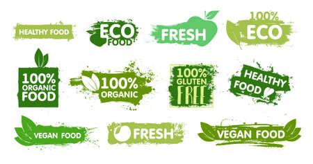 Organic, eco food, vegan, fresh, healthy and gluten free stickers with effect green paint. Organic food labels and healthy foods badges. Vector set