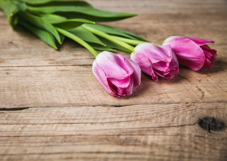 tulips on a wooden background with space for text photo