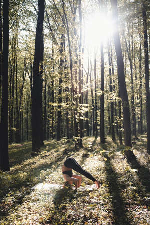 Girl go in for sports in the forest. In the lotus position. Exercises, gymnastics, relaxation. Healthy lifestyle.