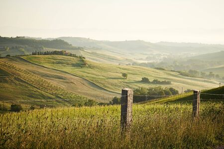 agriturismo: Classic Tuscan views in spring sunset time,  Pienza, Italy Stock Photo