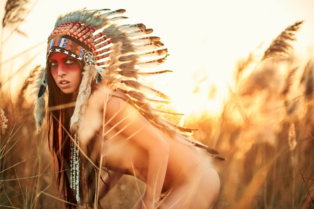 aboriginal woman: Beautiful girl in a suit of the American Indian on the background of reeds.