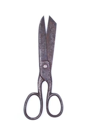 antique scissors: Forbici antichi su uno sfondo bianco