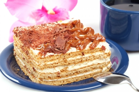 The cake with condensed milk photo