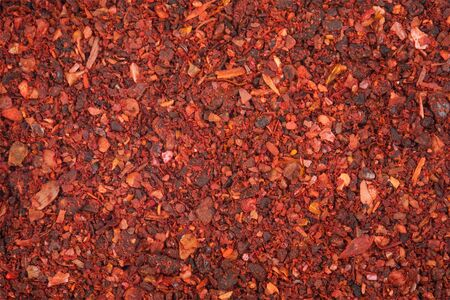Spices - dried tomatoes Stock Photo