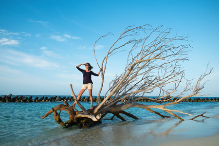 breakwaters: Girl on a driftwood