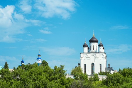 View of the Holy Dormition Monastery  Russia, Orel