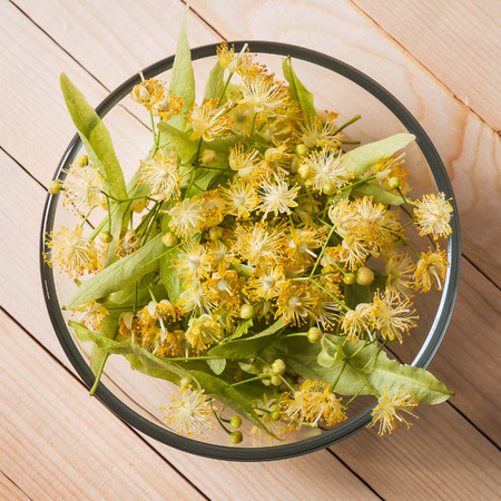 Linden flowers in a bowl photo
