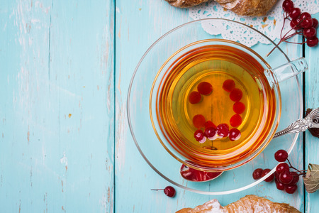 guelderrose: Tea with berries of a guelder-rose and space for text