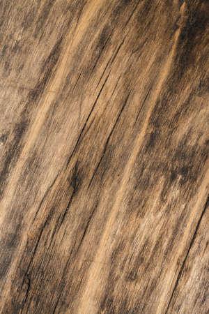 obsolete: Texture of obsolete wood