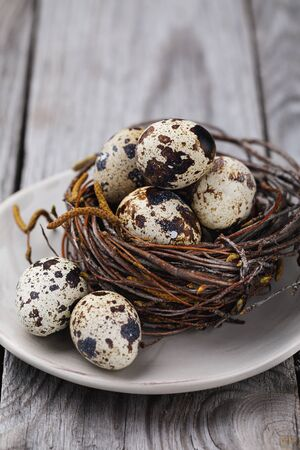 Quail eggs in the nest of birch branches. Fresh food on a wooden table